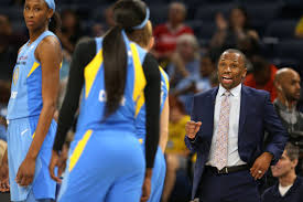 WNBA: Chicago Sky sign Stella Johnson - Chicago Tribune