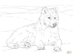 2019 Thanksgiving Wolf Coloring Pages Printable Coloring Page For Kids