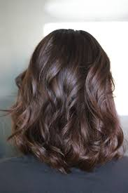 Hair Extensions Chocolate Brown Hair Color