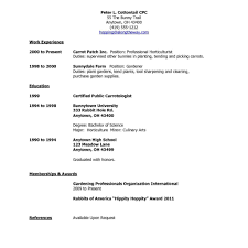 Reference Template Resume Resume References Template Resume Reference Template Resume 23