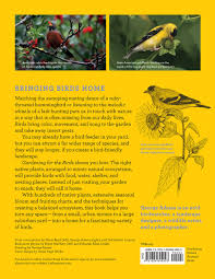 Robins Kitchen Garden City Gardening For The Birds How To Create A Bird Friendly Backyard