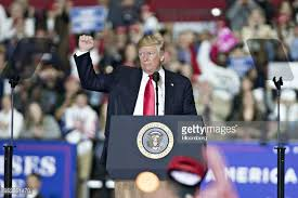 Image result for trump washington michigan rally