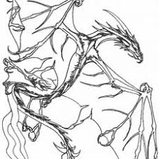 Nice Flying Dragon Coloring Pages Printable Craft Free Coloring Design
