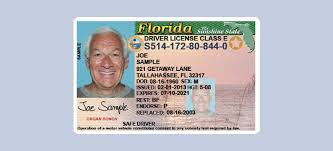 On Florida Behance Drivers License Redesign