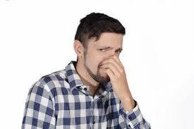 remove pet urine odor from concrete