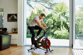 Exercise Bike Comparison Chart The 7 Best Exercise Bikes Of 2019