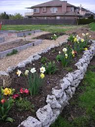 Small Picture How To Make A Rock Garden Home Design Ideas
