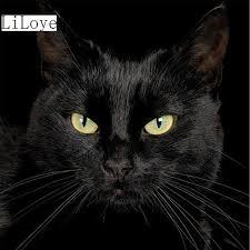 li loye diy diamond painting cross stitch kits black cat icon 5d square full diamond