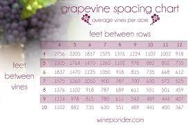 Vine Spacing Chart Wine Facts And Figures Wine Ponder
