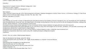 Professional Resumes Web Developer Resume Template Sample Amusing ...