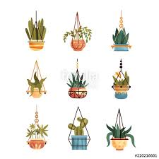 Indoor home office plants royalty Forooshino Green Hanging Indoor House Plants Set Elements For Decoration Home Or Office Interior Vector Illustrations Fotolia Green Hanging Indoor House Plants Set Elements For Decoration Home
