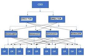Organizational Chart Of A Small Company Www