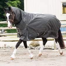 Amazon Com Country Pride Olympia Heavyweight Horse Blanket