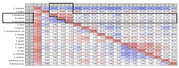 Figure A 3 Pair Wise Comparison Chart Of D1 Psba Amino