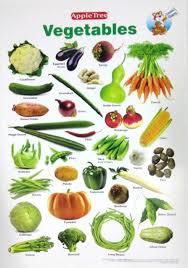 Vegetables Chart Apple Tree Vegetables Preschool 1 13 5 Inch 19 5 Inch