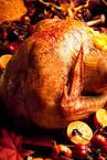 new orleans restaurants open on thanksgiving