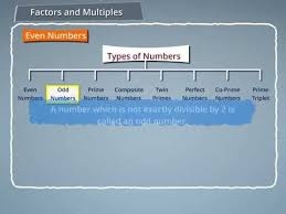 Prime And Odd Numbers Chart Types Of Numbers Even Odd Prime Composite Twin Primes Perfect Co Prime And Prime Triplets