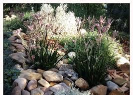 Small Picture Myres Landscapes landscaping gardening landscape design