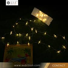 20 Led Lights Battery Operated 20 Leds Battery Operated Warm White Peg Line Led Lights String Christmas Tree Decoration Buy 20 Leds Battery Operated Seed Lights Battery Operated
