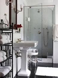 small but fancy walk in shower