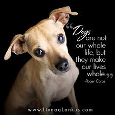 Dog Quotes Inspirational Simple Dogs And Life In These Unforgettable Inspirational Quotes