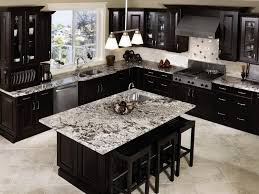 Plain Dark Kitchen Cabinets Colors 20 Beautiful Kitchens With And Decor