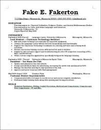 ... What To Have On A Resume 3 What A Resume Good Write Up 25 Best Ideas ...
