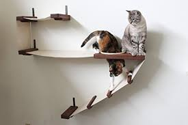 wall mounted cat furniture. CatastrophiCreations Deluxe Cat Playplace \u2013 Hammock \u0026 Climbing Activity Center Handcrafted Wall-mounted Tree Wall Mounted Furniture