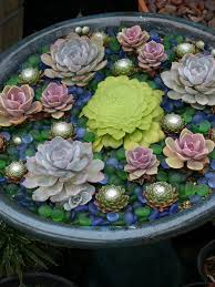 Small Picture 35 Indoor And Outdoor Succulent Garden Ideas Shelterness