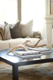 ... Antlers placed on coffee table