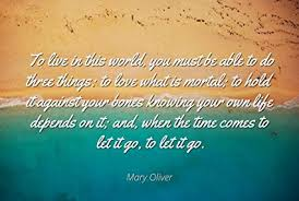 Amazon Mary Oliver Famous Quotes Laminated POSTER PRINT 40x40 Custom Mary Oliver Love Quotes