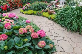 nothing is more inviting than a beautiful plant lined walkway if the walkway is in the shade it will need to be created using plants that don t require