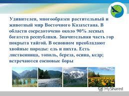 Реферат животный мир восточного казахстана Триасовый период триас Триасовый период мезозойской эры реферат животный мир восточного казахстана характеризовался сухим климатом Животные см