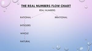 Warm Up Real Numbers The Real Numbers Flow Chart Real