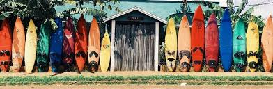 Surfboard Chart Best Surfboards 2019 Learning About All Types Of Surfing