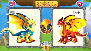 Dragon City Element Chart Dragon City Breeding Guide Charts