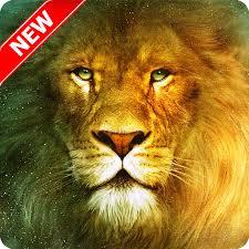 im 15 free lion wallpaper 1024x768