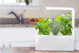 Hydroponics Herb Garden Kitchen Awesome Ideas Smart Herb Garden Delightful Smart Herb Garden By