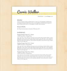 Example Of Simple Resume Format. Simple Job Resume Examples ...