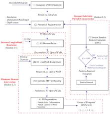 Ptv Org Chart Osa High Fidelity Digital Inline Holographic Method For 3d