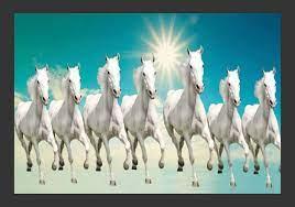 Full Hd Wallpaper 7 Horse