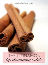 cinnamon lip
