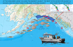 Halibut Weight Chart Data Shows We Are The Best Halibut And Salmon Fishing In