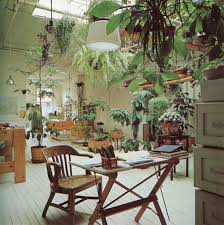 plants for office space. modren office now thats a creative office space intended plants for office space