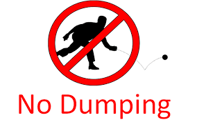 Image result for lawn bowls dumping rules