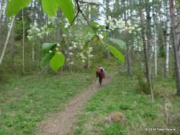 Yeti Rides: Vigu Climbing Course
