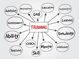 Training Strategy 7 Considerations When Building Your Training Strategy For 2016
