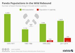 Chart Panda Populations In The Wild Rebound Statista