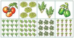4x8 raised bed vegetable garden layout. Raised Bed Vegetable Garden Layout Gardens 5 Designs For Or Beds 4x8