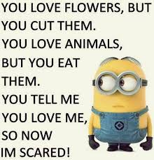 funny minion joke quote 2017 august